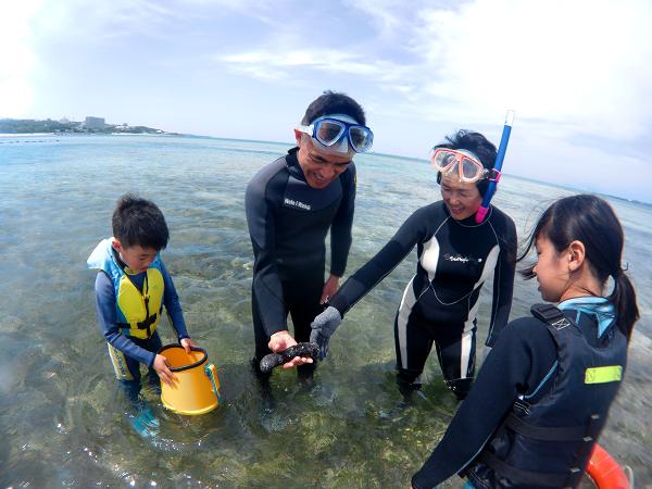 沖縄の海 観察