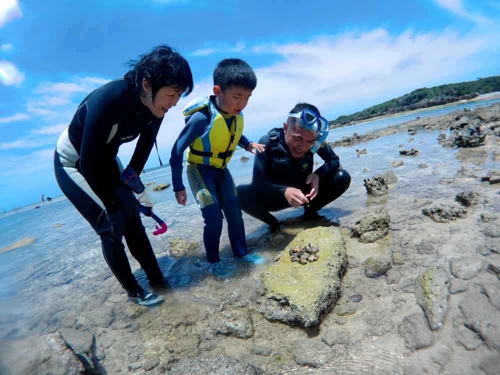 沖縄 海の生物