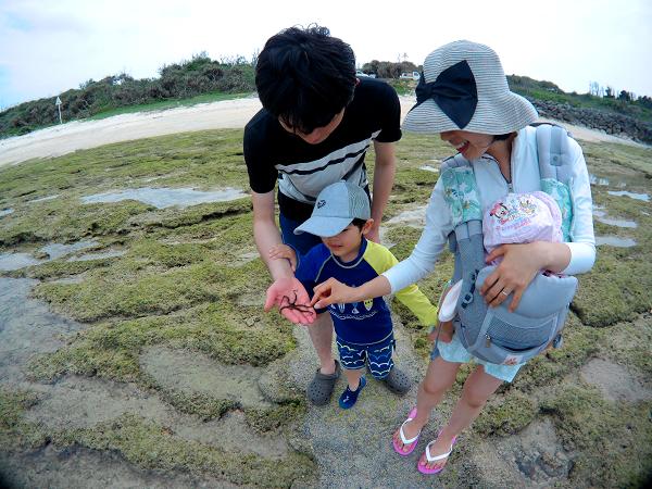 海辺のピクニックツアー